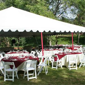 Cool Corporate Event Wedding Party Rentals Tempe Surprise Download Free Architecture Designs Momecebritishbridgeorg